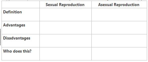 Cell division and asexual reproduction advantages